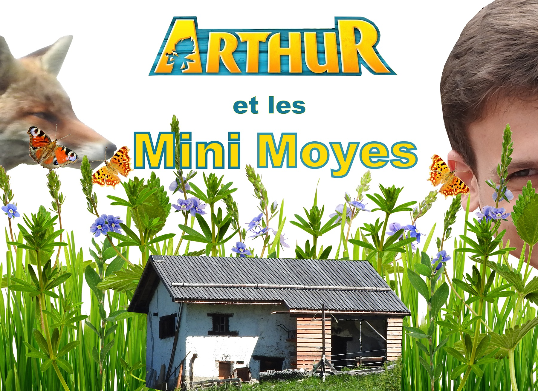 MiniMoyesLéger